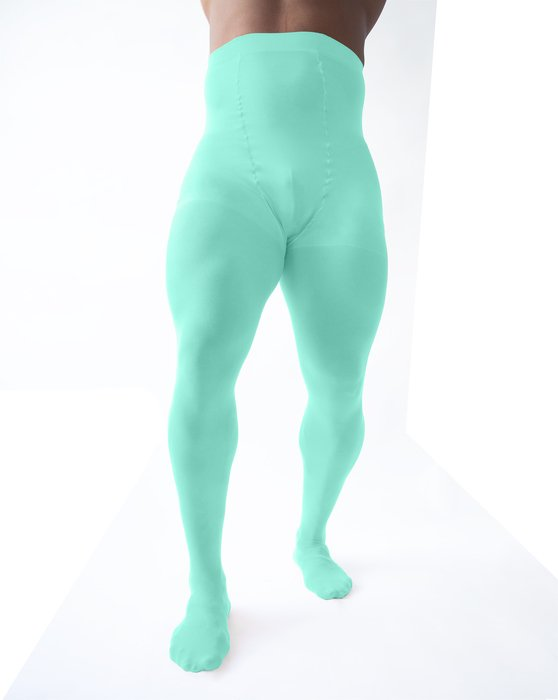 Pastel Mint Plus Sized Nylon/Lycra Tights Style# 1008 | We Love Colors