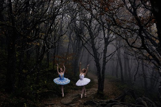 forest-dancer-ballet-photography-codis