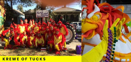 Krewe Of Tucks Mardi Gras