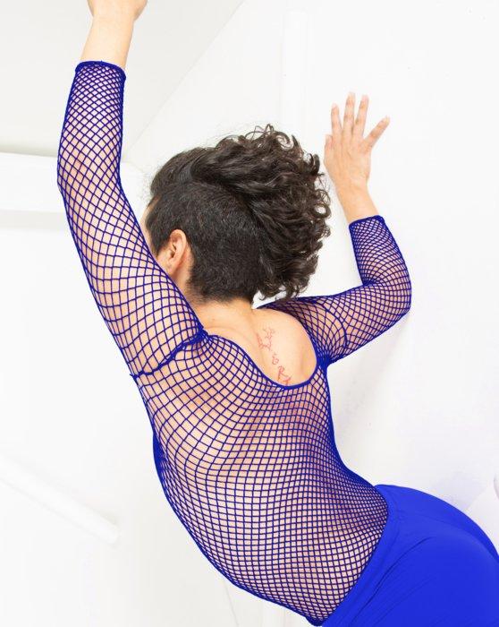 Royal Fishnet Long Sleeve Shirt Style# 6001   We Love Colors