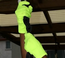 Colorful Solid Color Nylon Gloves