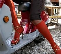 Solid Color  Knee Highs
